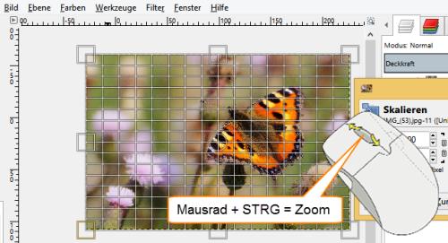 Bild 5 Mit Mausrad + STRG-Taste Foto vollständig anzeigen