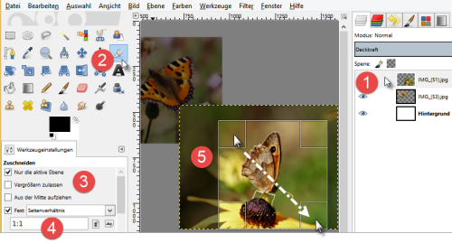 Bild 8 Foto quadratisch zuschneiden